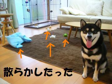 002_convert_20120705183947.jpg
