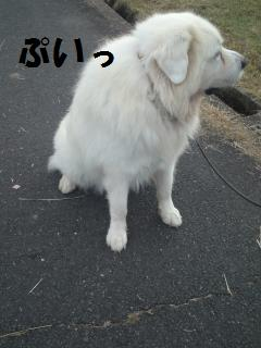 003_convert_20121025131423.jpg