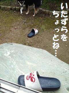 003_convert_20121130143254.jpg