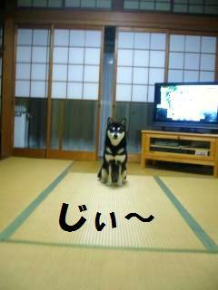 010_convert_20121024154750.jpg