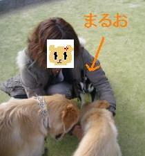 015_convert_20120217130413.jpg