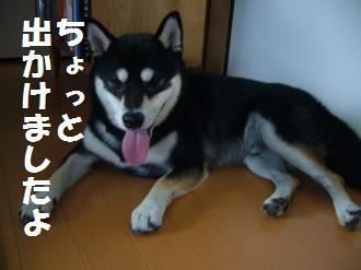 018_convert_20120917113500.jpg