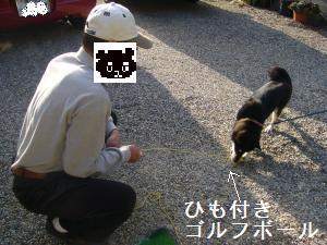 026_convert_20111031134730.jpg