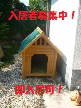 032_convert_20120808151328.jpg