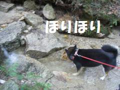 047_convert_20120827171101.jpg