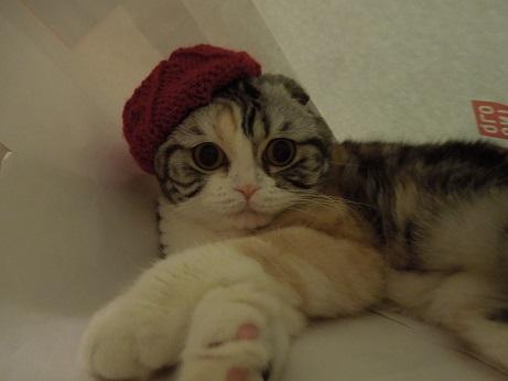 2ベレー帽
