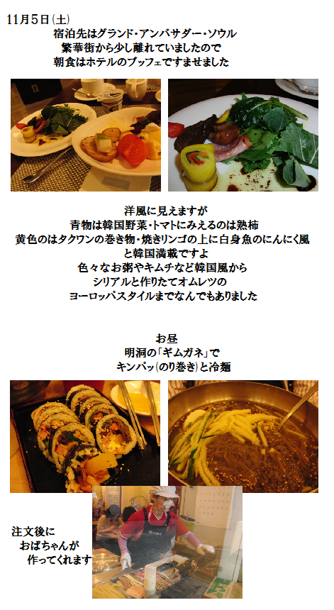 20111105fo01.png