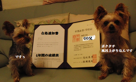 20120315002.png