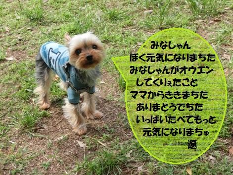 2012052107.jpg