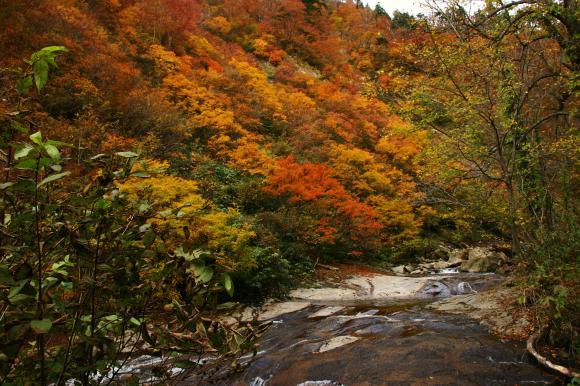 安の滝 7
