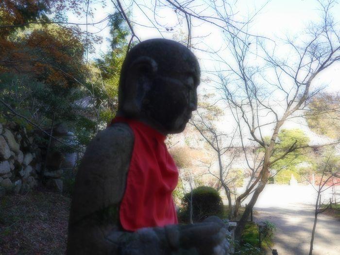 11月30日紅葉ツー (22)