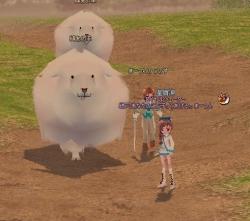 2014-01-09 綿あめ羊イベント!