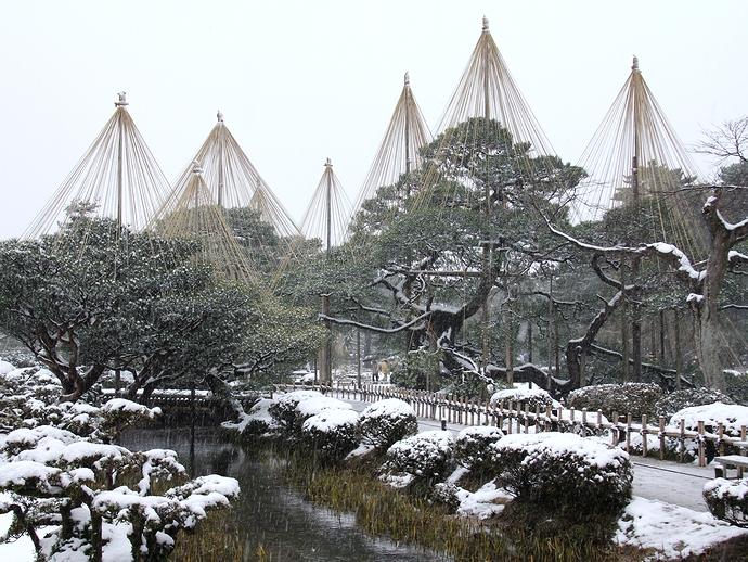 冬の兼六園 雪化粧した雪吊りの松
