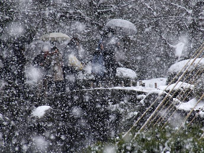 雪の舞う兼六園