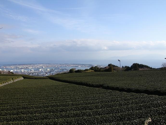 日本平から眺めた駿河湾 伊豆半島も