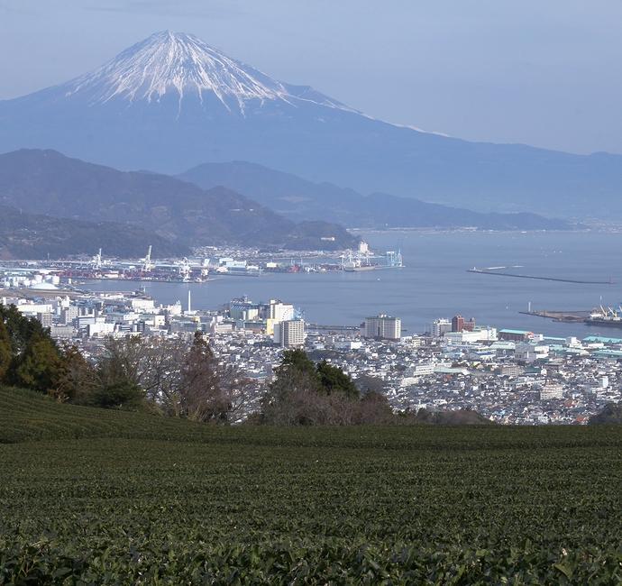清水港と富士山 日本平からの絶景