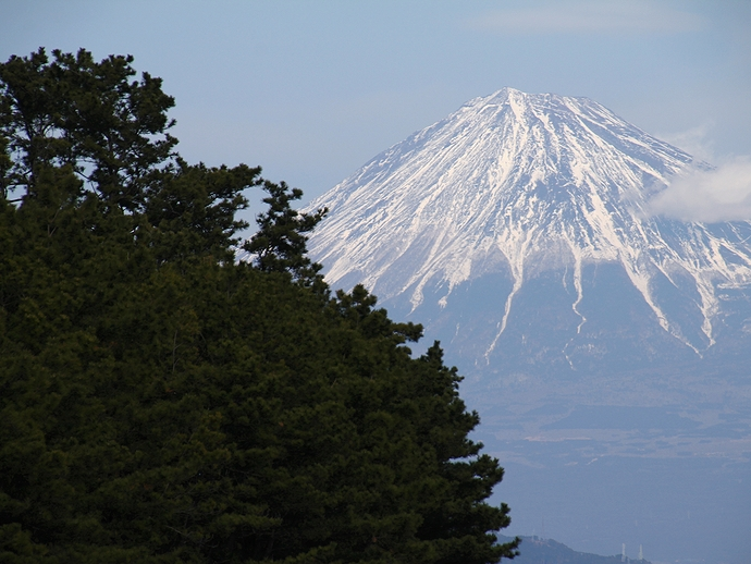 松林と富士山 静岡市三保の松原