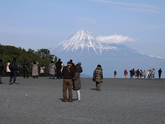 冬の三保の松原 富士山を望む