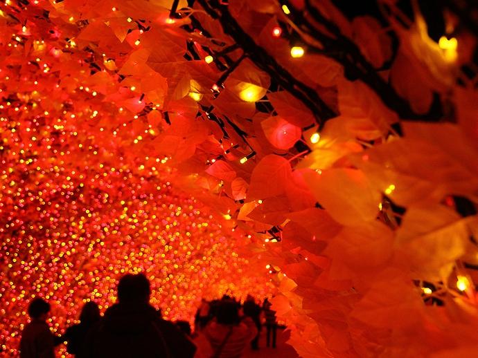 光のトンネル「もみじ」