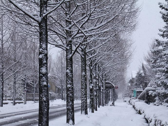 街の雪景色 金沢市太陽が丘