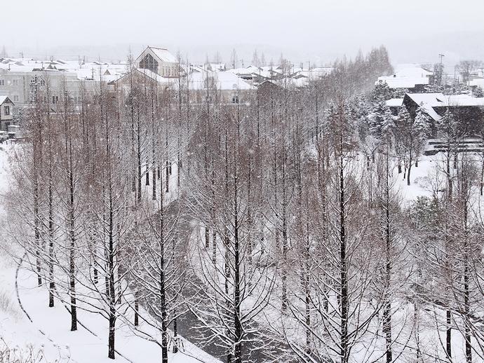 高台から見下ろした雪の太陽が丘(金沢市)
