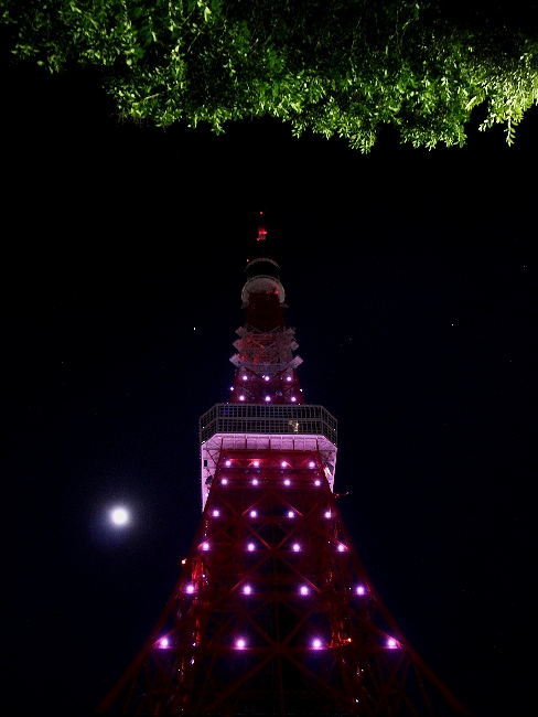 東京タワーの夜景 満月ダイヤモンドヴェールとともに