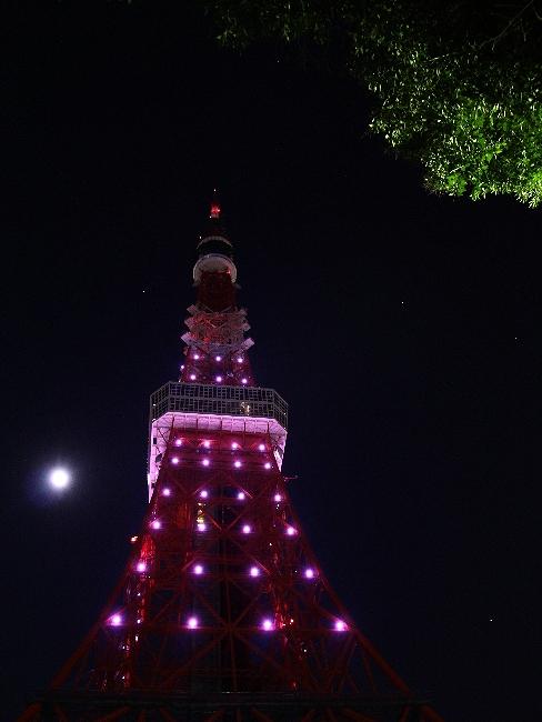 東京タワーの夜景 満月とともに