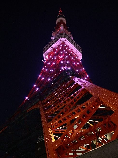 東京タワーの夜景を足元から