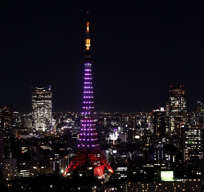 東京タワー桜色のダイヤモンドヴェール 世界貿易センタービルより