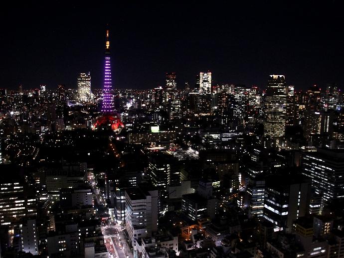 世界貿易センタービル最上階展望フロアからの夜景