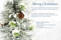 Christmas Greeting 2013 2 アロマスクール マッサージスクール オーストラリア