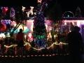 Christmas Lights 2013 3 アロマスクール マッサージスクール オーストラリア