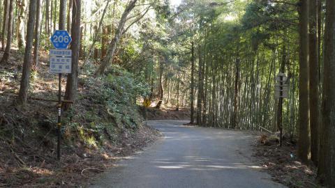 福井県道206号
