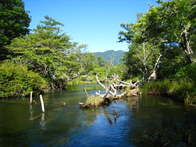 2010904湯川 (23)