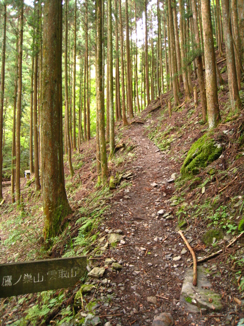 2010.10.16鷹ノ巣山 (15)