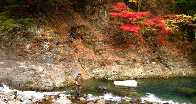 2010.11.14うらたん (48)