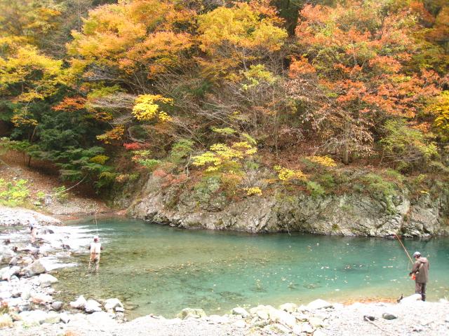 2010.11.14うらたん (22)