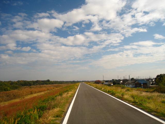 2010.11.21サイクリング (17)