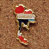 タイのピンズ