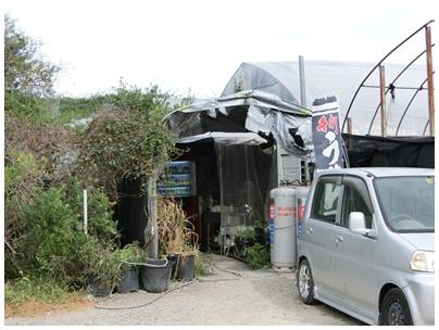 岸井うどん3(風景)