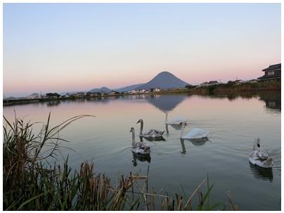 261019田村池風景1