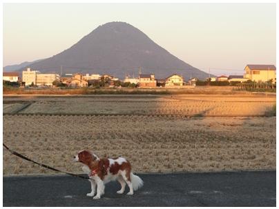 讃岐富士とpoco