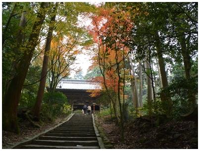 仁王門への道1