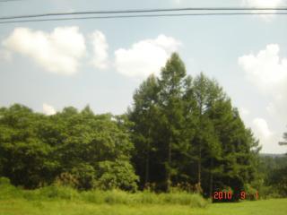 2010_0901_130142-DSC03178_convert_20100905062525.jpg