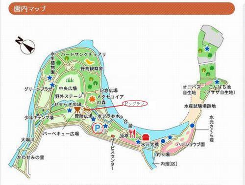 水元公園園内図