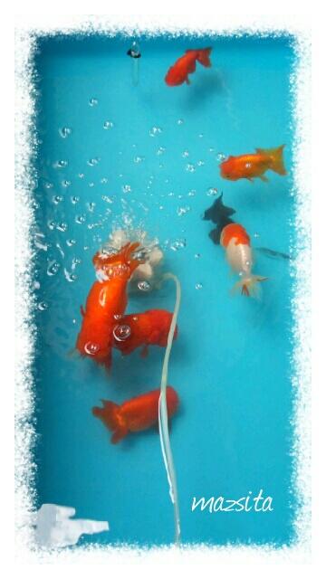 fc2blog_20120717154252432.jpg