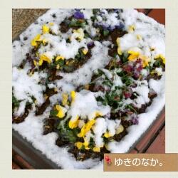 iphone_20120124105402.jpg