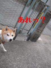 013_20111004152836.jpg