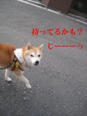 014_20111004152835.jpg