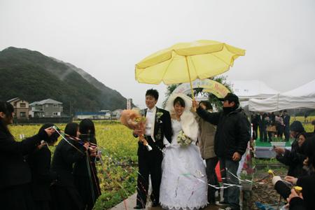 菜の花結婚式6